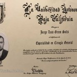 Dr. Jorge Green Certificate - Tijuana Weight Loss Surgeon